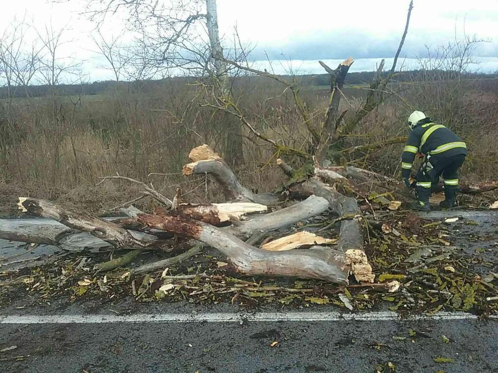 Popadané stromy, či povodne. Na Slovensku vyčíňa počasie