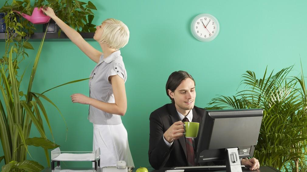 žena muž práca žena zalieva kyticu muž za počítačom