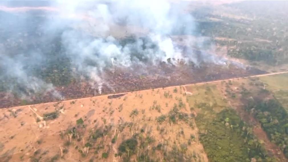 Stovky zvierat utekajú pred požiarom v Amazonskom dažďovom lese. V Bolívii pre ne stavajú útulky