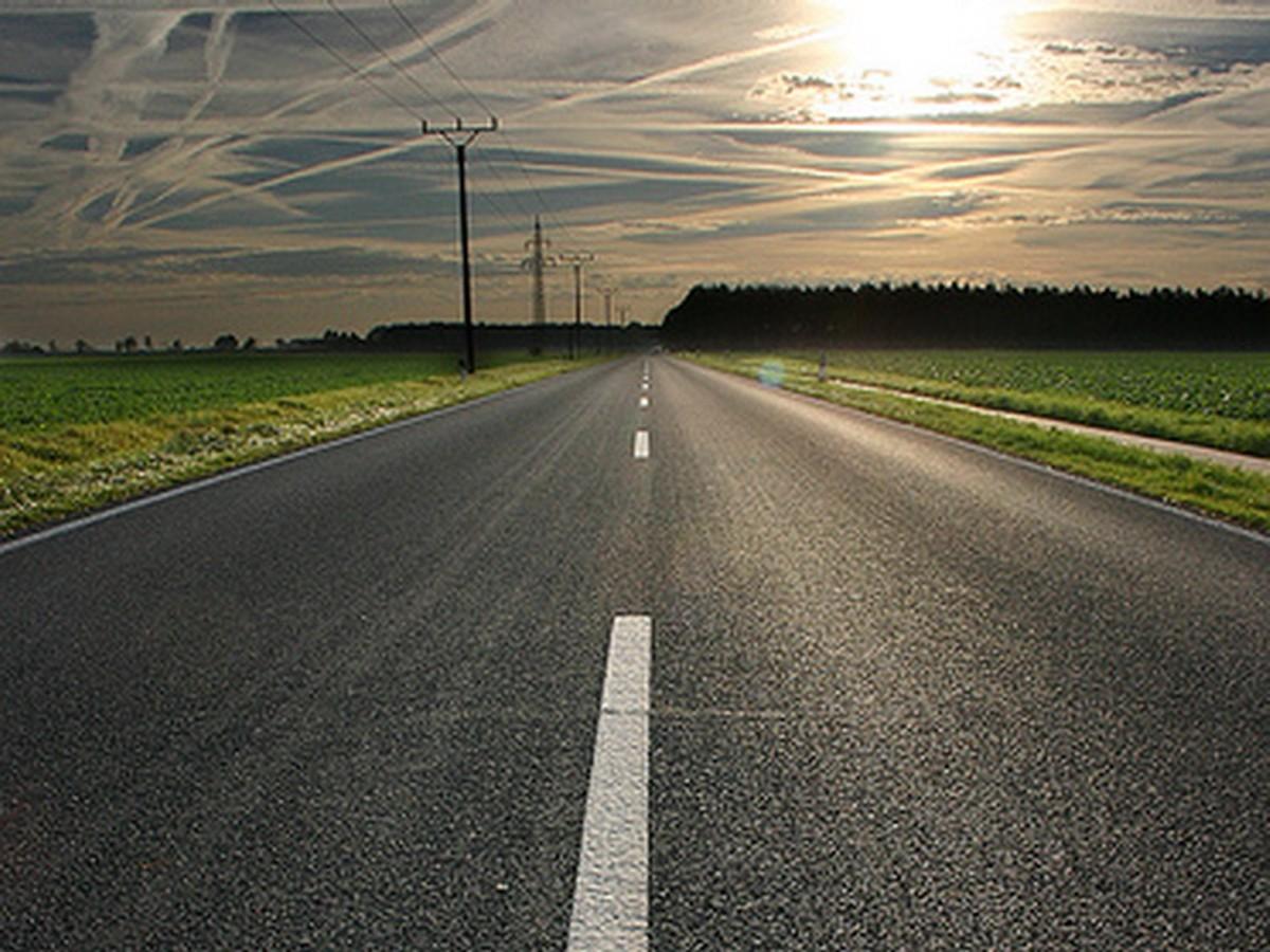 useless road user - HD1024×768
