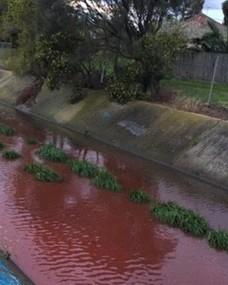 Rieka nabrala krvavo červenú farbu