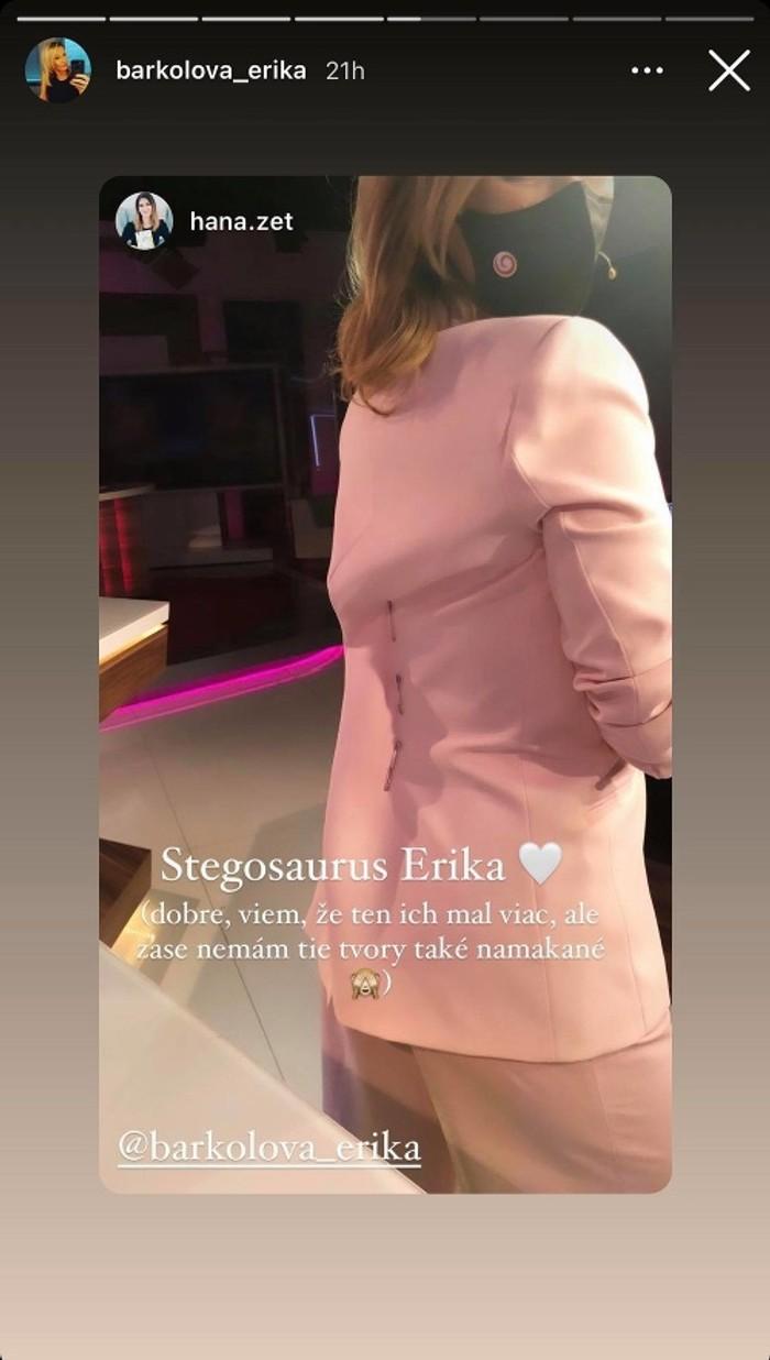 Erika Barkolová - sako