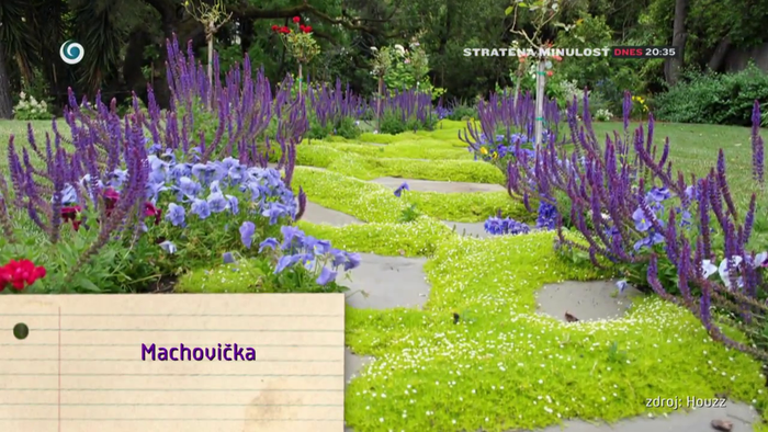 NOvá záhrada - machovička