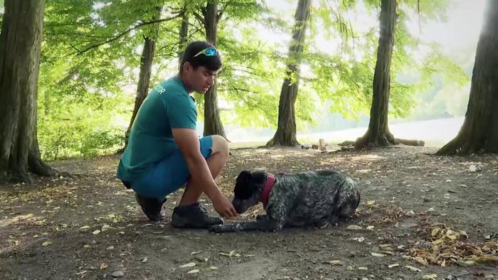 Miláčikovo - Pes trik - Odkladačka
