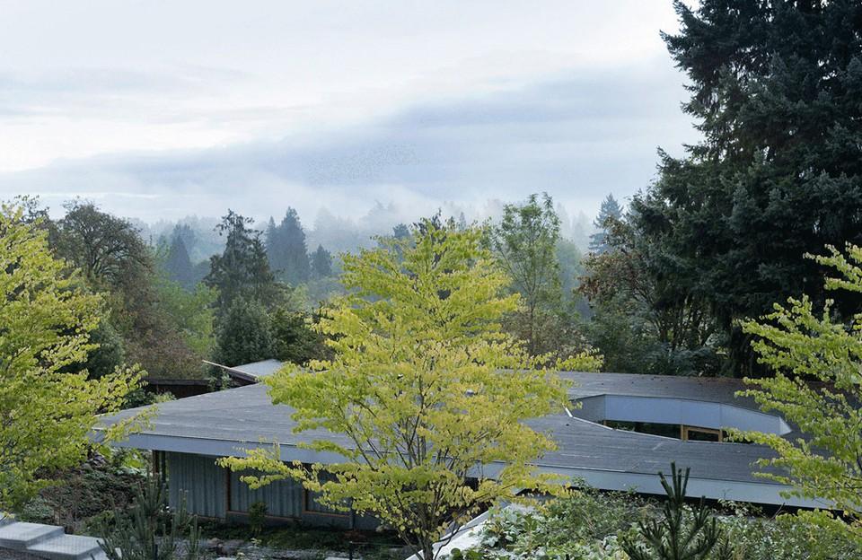 Moderné domy v lone prírody (1)