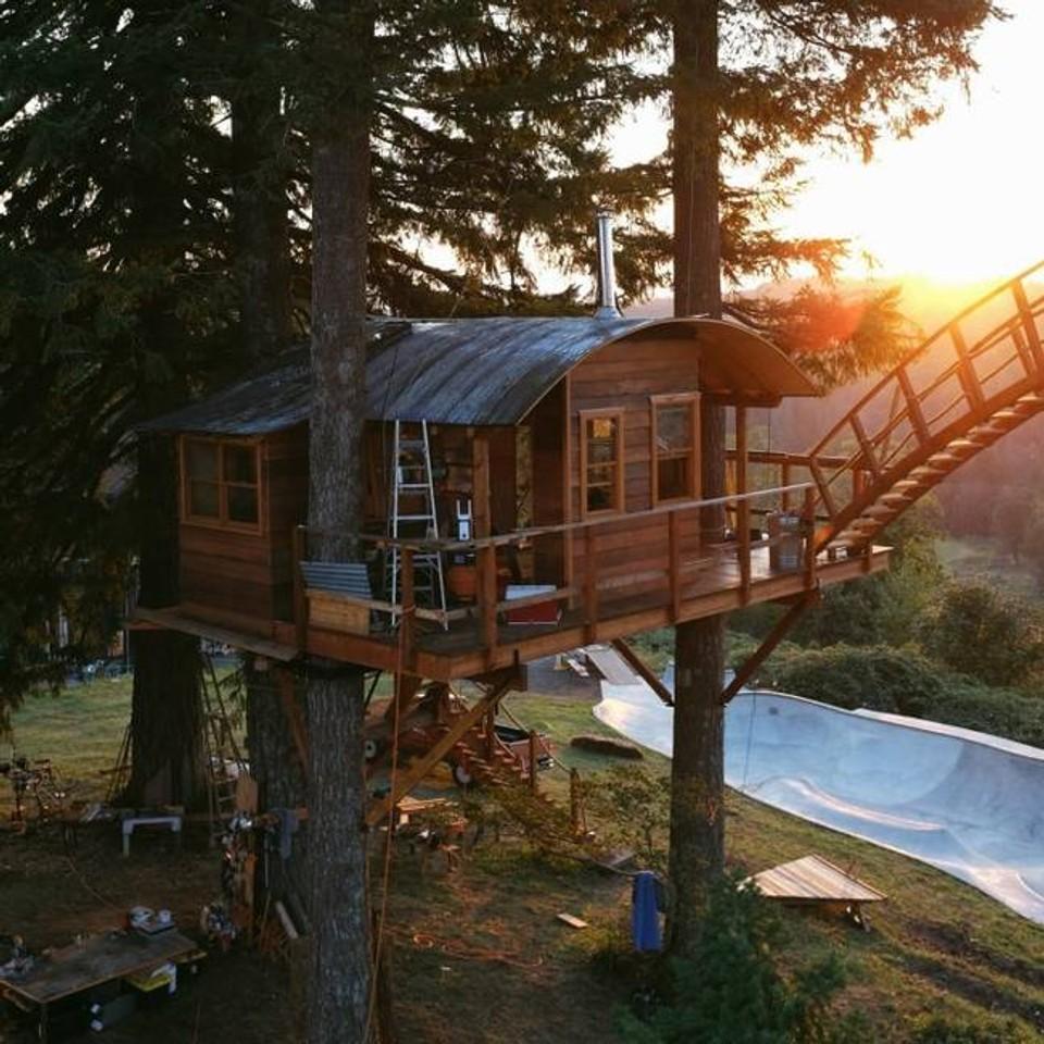 Dom v strome