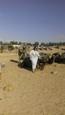 Názlerová v Tunise 3