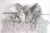 Koláže a kresby: Terka Balážová