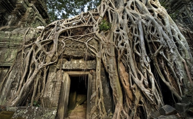 Ankor v Kamobodži