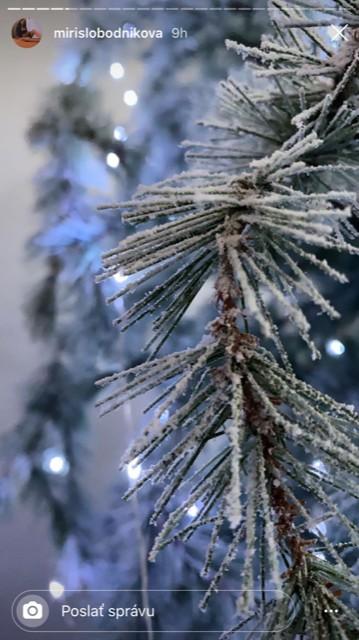vianocny stromcek mirky slobodnikovej
