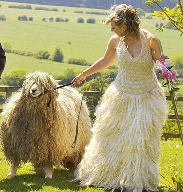 369a12651950 Zdroj  facebook. . 15 fotografií. saty. saty saty. Najhoršie svadobné šaty