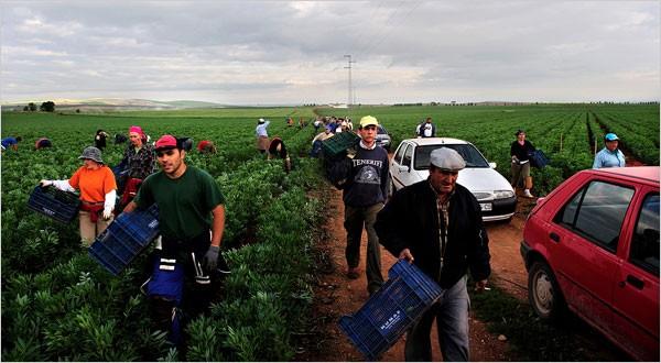 Pracovníci roľníckeho družstva v Marinalede.