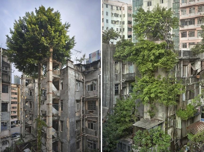 Čínsky Hong Kong